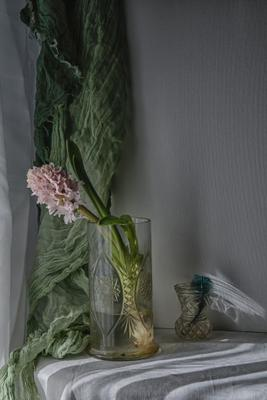 Апрельский лучик натюрморт стекло цветы гиацинты