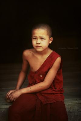 Little monk портре монах ребенок путешествия мьянма бирма