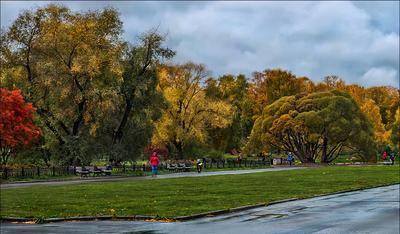 Осень в Московском ботаническом саду. Москва Ботанический сад Сентябрь