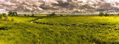 Парк Юрского периода. лето тучи небо поля болота