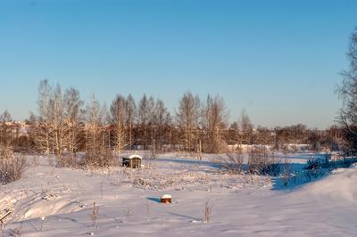 Павино павино кострома область природа пейзаж зима январь
