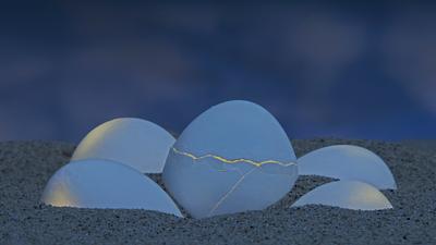 *** яйца песок ночь