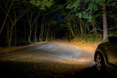 Дорога в темноту ночь природа long выдержка деревья
