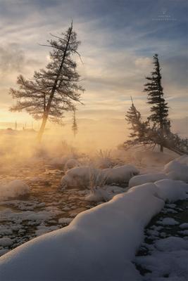 Морозное утро Алтай Россия Горы зима Пейзаж Природа курайская степь Северо-Чуйский хребет туман
