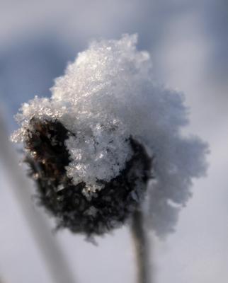 История про зимний парик зима