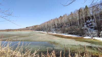 Весна на озере весна озеро лед снег лес березы