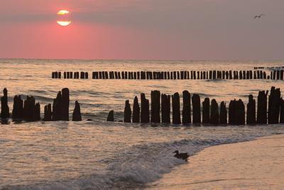 На рассвете Балтика море рассвет
