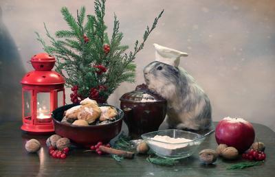 Пекарь печенья животные композиция печенье елка новый год юмор