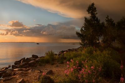 На закате Финский залив закат