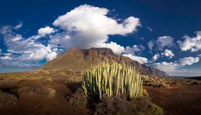 Под голубым небом Тено Испания Тенерифе Тено мыс океан кактус облака панорама скалы