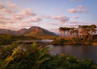 ...Connemara calm... ireland connemara mountains nature outdoors landscape evening dusk pine island scenic sunset cloudscape serenity europe awe wonderful spectacular picturesque