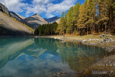 Нижнее Шавлинское озеро. Горный Алтай