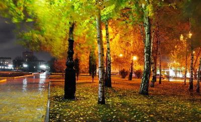 ноябрьская осень