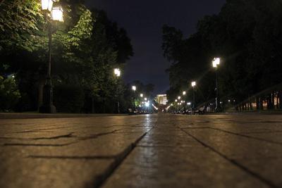 Александровский сад летней ночью. Россия Москва Александровский сад ночь