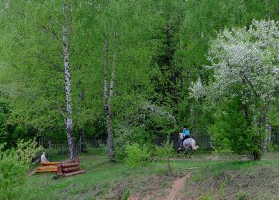 ..жизнь только миг.. прогулка старость гонка молодость парк