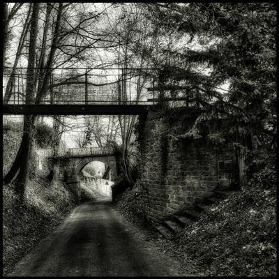 Место для прогулок