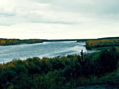 Вычегда прекрасна река пейзаж природа красота течение высота простор речка лес осень пасмурно облака небо вода зелень поход