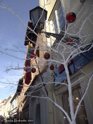 Зимние яблоки Вильнюс, Литва, яблоки, зима, улица, снег, мороз