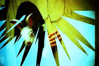 Magic Rabbit lomography doubles filmswap кролик сказка волшебство ломография мультиэкспозиция