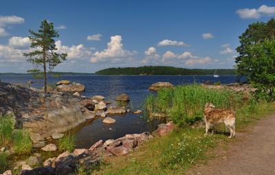 - А куда уходит лето?! лето озеро_Сайма Финляндия summer lake_Saimaa Finland