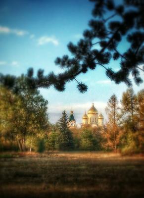 Вид на Храм с Ботанического сада