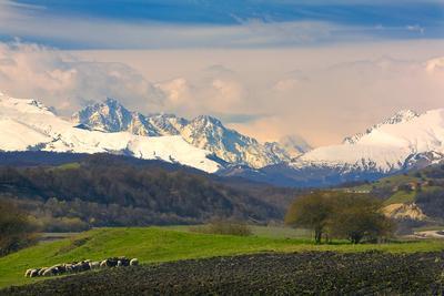 весна в горах КБР, Черекское ущелье, горы, весна