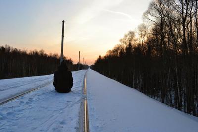 Путь.. ЖД природа лес пейзаж