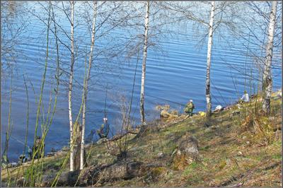 Согласно купленым билетам Волга май рыбалка