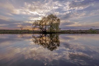 Хороший день 7 мая весна май озеро вода дерево облака отражения