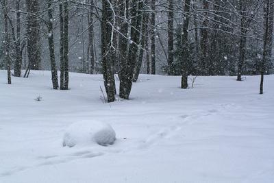 Падал мартовский снег...