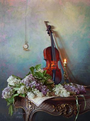 Натюрморт со скрипкой и цветами цветы скрипка сирень букет свеча