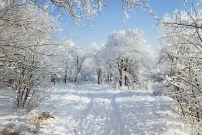 Зима в Зауралье