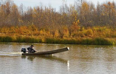 По одной из таёжных проток осень протока моторка лодка облосок плоскодонка