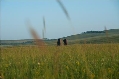 В поле Хакасия путешествия туризм краеведение поле трава ворота камни загадка окунёвцы