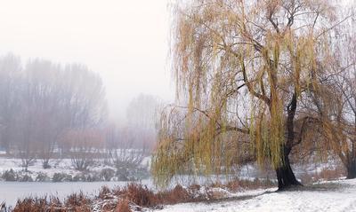 О туманной перспективе туман