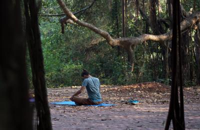 Медитация Медитация йога утро лес индия