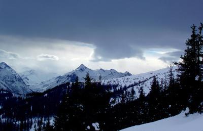 Синяя птица…. горы, туман, тучи, ели