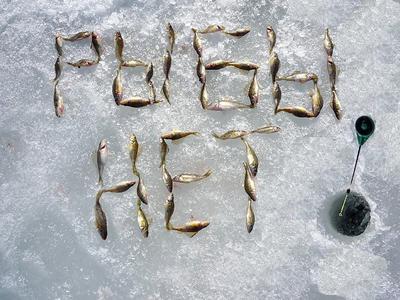рыбы нет рыбалка