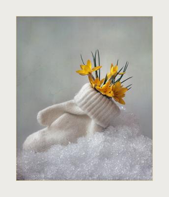 Привет, Весна! весна снег крокусы