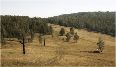За темными лесами, за высокими горами Базаиха, Торгашинский, Красноярск