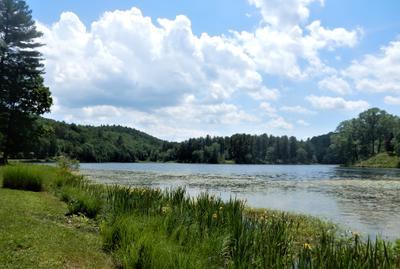 Lake Tyrrel