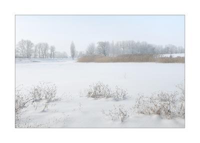 Февральская зарисовка февраль мороз иней