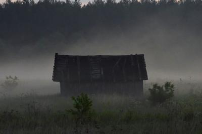 Летний вечер, июньский туман. лето.июнь.мордовия