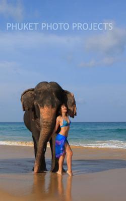Лена и Чанг слон пукет