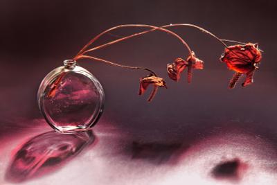 Флакон от Шанель и три сухих цветка