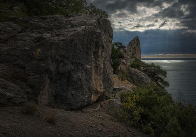 Крым хмурится Новый Свет Крым можжевельник октябрь море скала тучи