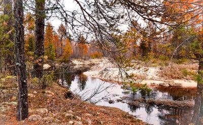 ***Осень на реке Белый Лух в районе села Тимошина