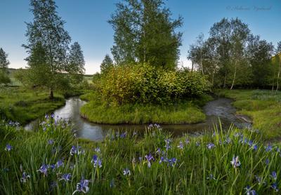 Июнь - начало лета. природа лето речка