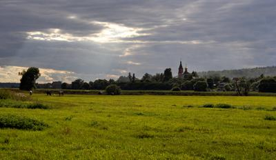 летом полянка церковь коровки лето