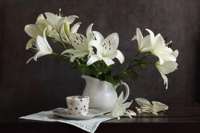 Iciness lilies icecream icy whiteness